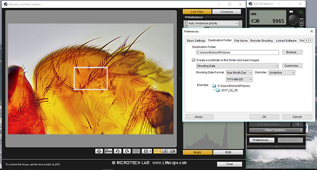 Canon EOS Utility Software with DSLR and microscopy