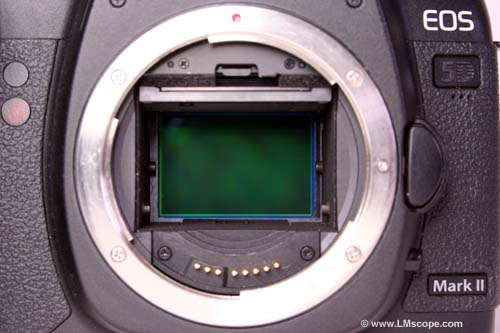 Full format sensor (24 × 36 mm) vs  half format sensor in