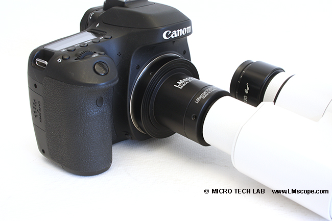 Kamera am Okular mithilfe von LM Digital Adapter C-Mount Port