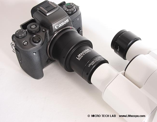 Test die systemkamera canon eos m am mikroskop