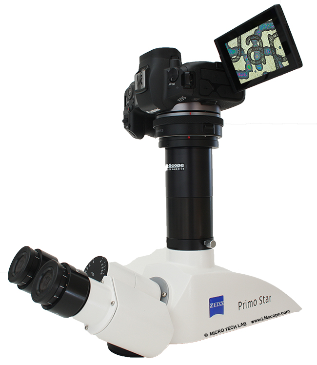 microscope camera on photo tube DSLM