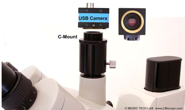 Microphotography Euromex Novex Zoom trinocular head, C-Mount port and USB camera