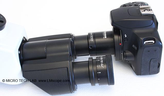 Das labormikroskop euromex oxion im test für den einsatz in der