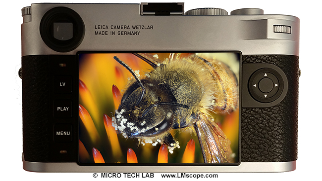 Profi vollformatkamera leica m am mikroskop neue profikamera