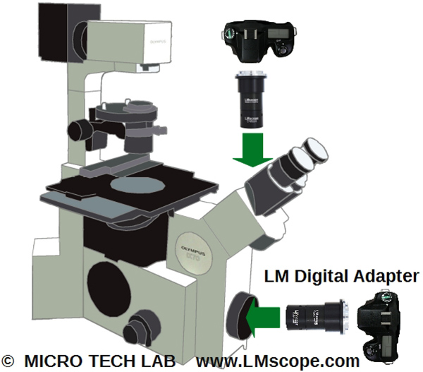 Mount the LM Digital Adapter on the frontside port