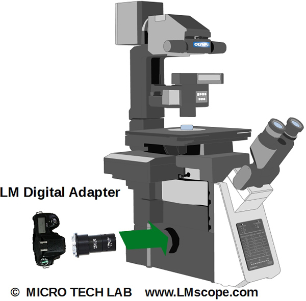 Olympus IX microscope pour photography