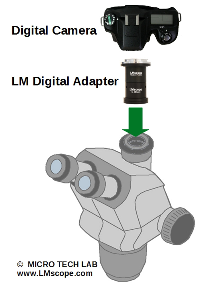 mount a dslr with lm microscope adapter on a zeiss stemi 508 doc
