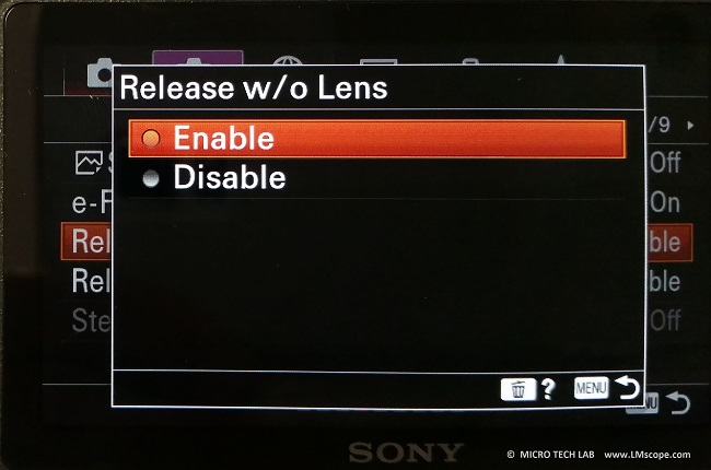 Sony Alpha 6400 DSLM release without lens