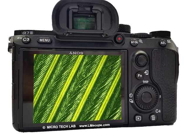 Sony Alpha 7 III TFT monitor Touchscreen