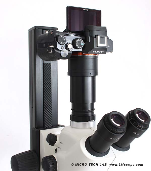 Sony DSLM on microscope with stand