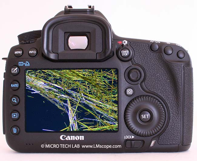 Canon 5D Mark III dos de l appareil photo cristals
