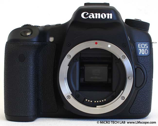 Microfotografía con la Canon EOS 70D