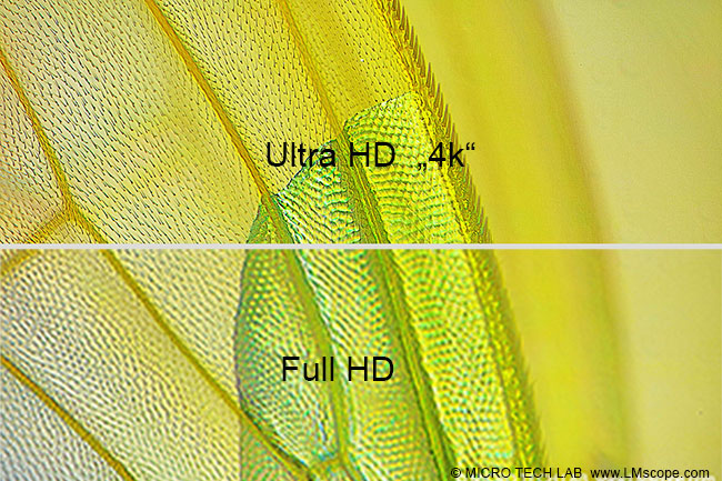 UltraHD 4K Full HD microphotography LMscope