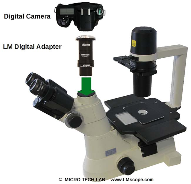 the nikon eclipse ts100 exceptionally versatile with great image rh lmscope com Nikon Inverted Microscope Inverted Microscope