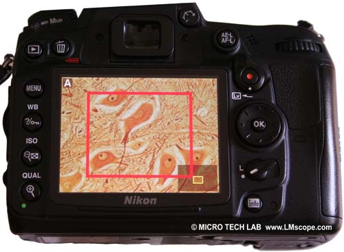 Nikon D7000 magnifying function Lv switch