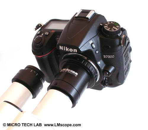 Nikon D7000 with  LM digital adapter on the eyepiece  tube