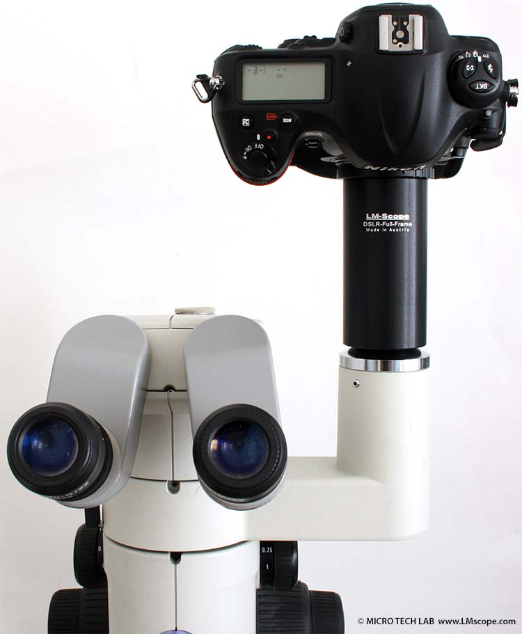 Mikrofotografie mit der Vollformatkamera Nikon D4
