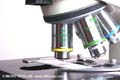 Improving the quality of your microscope images