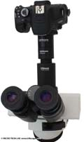 BX series Olympus microscopes