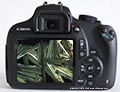 Canon EOS 1200D - simple camera with a very good price performance ratio for microphotography