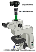 Microscope adapter: The Zeiss Axioskop 40 as the universal solution for photomicrography?