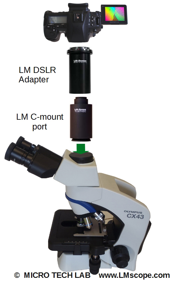 Olympus CX43 – top-quality photographic documentation with a routine microscope with our LM digital adapters and microscope cameras, DSLR and system cameras