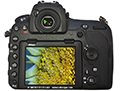 Nikon D850 fullframe-sensor camera for professionals offers enhanced capabilities for microscopy and macroscopy applications.