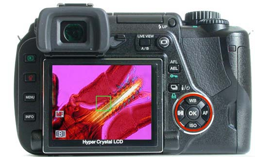 Olympus E-330: first Live View DSLR, introduced by Olympus in 2006, on the microscope