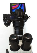 Tested for you: the mirrorless fullframe-sensor system camera Nikon Z7 on the microscope