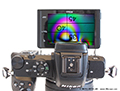 Nikon's Z50 DX-format mirrorless camera performs impressively on the microscope