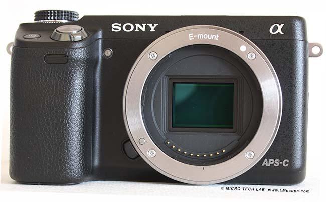 Gelungene mikroskopfotos mit der spiegellosen systemkamera sony nex